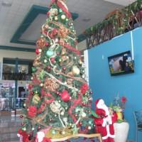 Navidad 2014 008