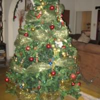 Navidad 2015 001